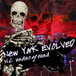 File:New York EVOLVED (PS3).png