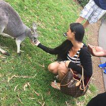 Kira kangaroo 2015-03-17