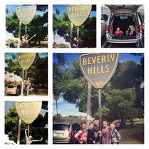 Beverly hills aldc