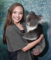 Maddie and Koala March 2015