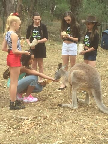 File:JoJo Nia Kendall Maddie Mackenzie with kangaroo 2015.jpg