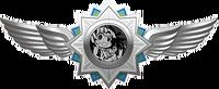 Girls Gun 2 x Danganronpa Game SHSL Nurse Badge