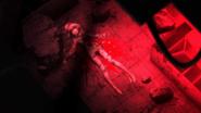 Ruruka dead