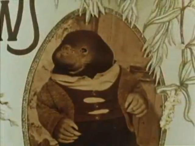 File:Mole.jpg
