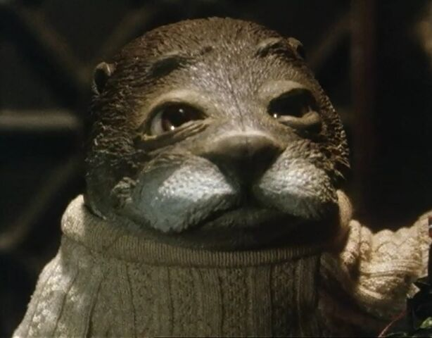 File:Otter.jpg