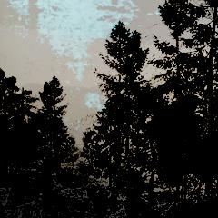 File:Ach-Dark Forest.jpg