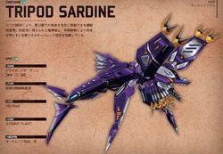 Tripod sardine