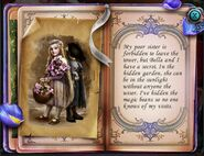 Rapunzel diary 2