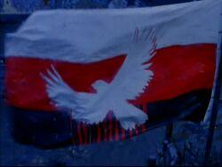 Terminal City Flag
