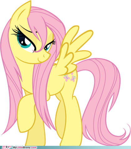 File:My-little-pony-friendship-is-magic-brony-i-really-really-really-like-her-mane.png