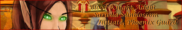 File:Sari Banner w650.jpg