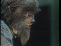 698Werewolf