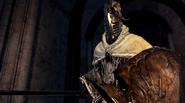Silverdrake knight