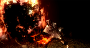 Pyromancy Feature 01