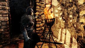 Torch 01.jpg
