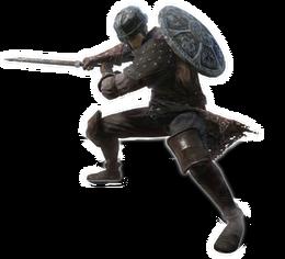 Warrior DSII