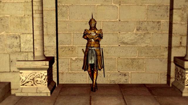 File:Darkmoon knightess.jpg