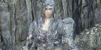 Grave Warden Set (Dark Souls III)