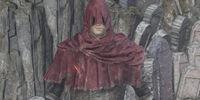 Slave Knight Set