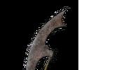 Scythe (Dark Souls II)