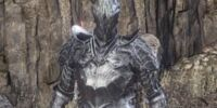 Outrider Knight Set