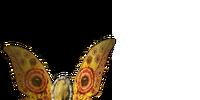 Moon Butterfly Shield