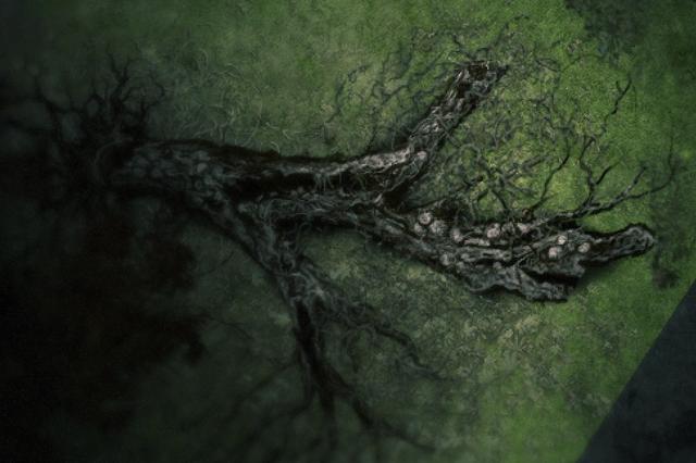File:Broken tree.png