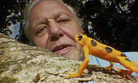 File:DavidAttenborough460.jpg