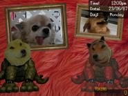 Safe Room (DSaF 3 troll game)