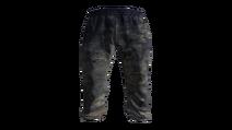 Blue Tracksuit Pants Model (D-BD)