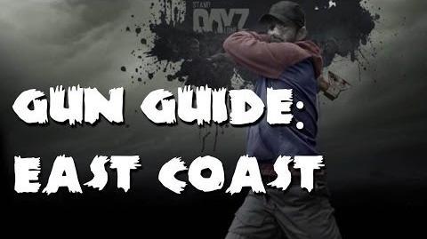 DayZ SA - East Coast Gun Guide