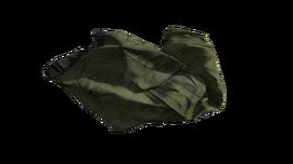 Green Cargo Pants (P-W)