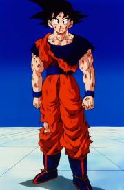 GokuAfterFightingVegetaBuuSaga