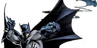 Bruce Wayne (Shattered Gotham)