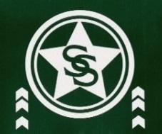 File:Smallville Sentinel.jpg