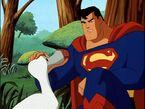 Superman Superman11