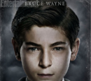 Bruce Wayne (Gothamverse)