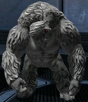Player gorilla STAR
