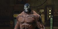 Venom Supplier Diego
