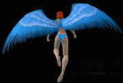 Small Bird Wings
