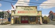 AmmunationPaletobay