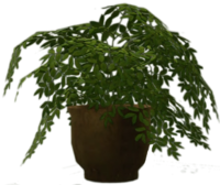 Dead rising Potted Plant 5