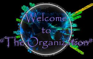 """The Organization"""