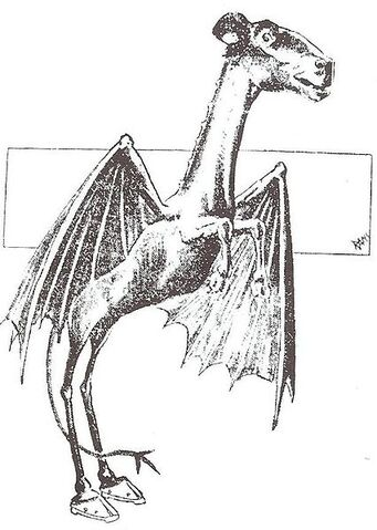 File:426px-Jersey Devil Philadelphia Post 1909.jpg
