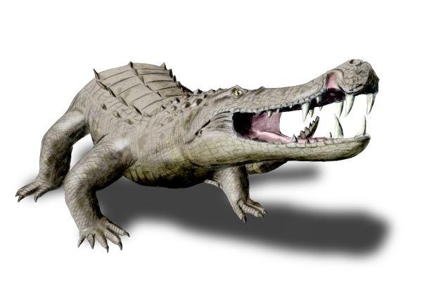 File:Kaprosuchus NT.jpg
