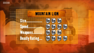 S1 DR mountain lion