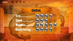 S1 DR Gharial