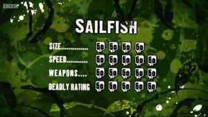 S3 DR sailfish