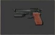 Weapon-Police Handgun