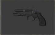 Weapon-Magnum